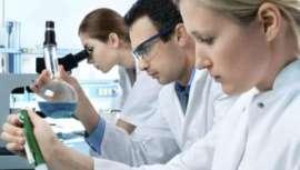 Cientistas descobrem proteína capaz de conter o desenvolvimento do câncer