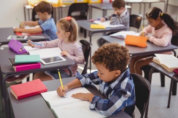 EDUCA MAIS BRASIL: 19.200 mil bolsas de estudo estão disponíveis para escolas particulares de Pernambuco