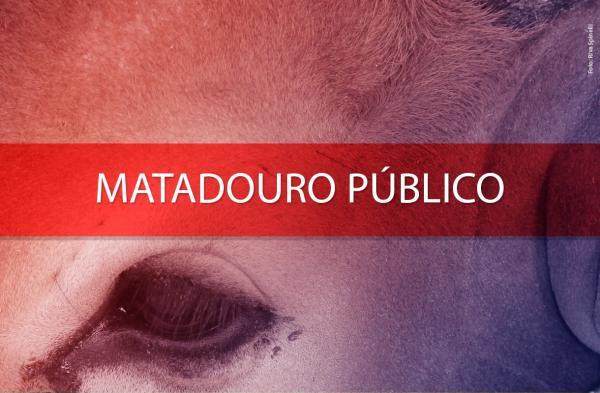 IATI: MPPE recomenda interdição do matadouro público