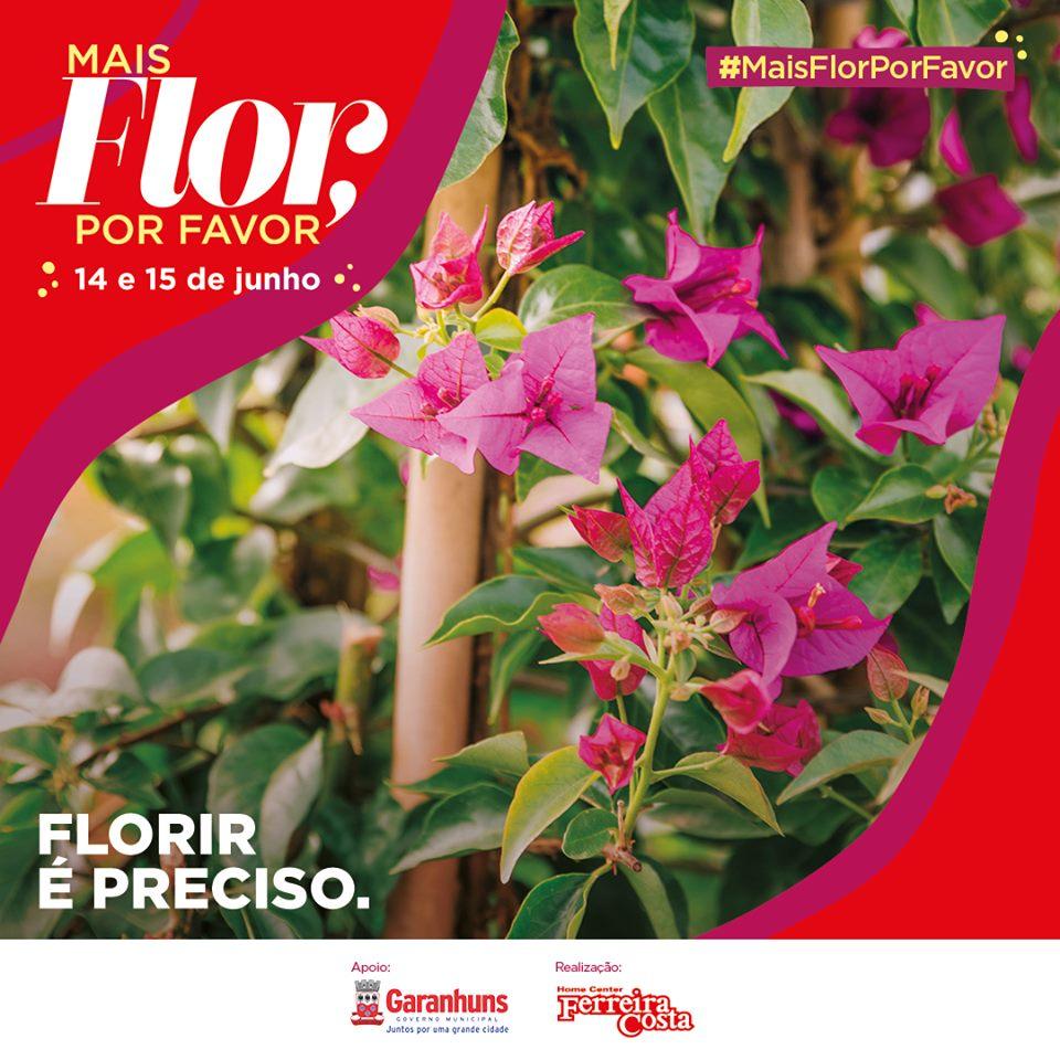"""""""Mais flor, por favor"""": Campanha incentiva plantio de 3 mil mudas de Bougainvillea"""