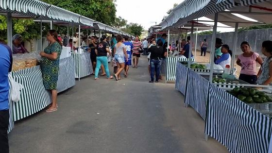 Garanhuns: MPPE ajuíza ação civil para suspensão do processo licitatório de serviços para administrar feiras livres